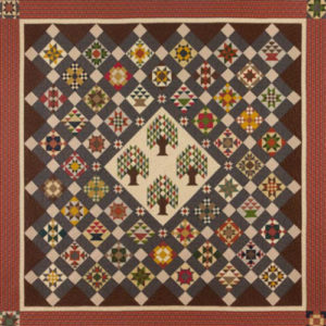 bristle creek farmhouse quilt